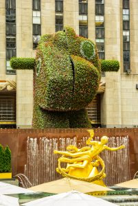 "New York, NY, USA - June 24, 2014: Rockefeller Center, located in the heart of Midtown Manhattan, with the golden Greek Prometheus statue and the ""Split-Rocker"" flower scultpure by Jeff Koons."